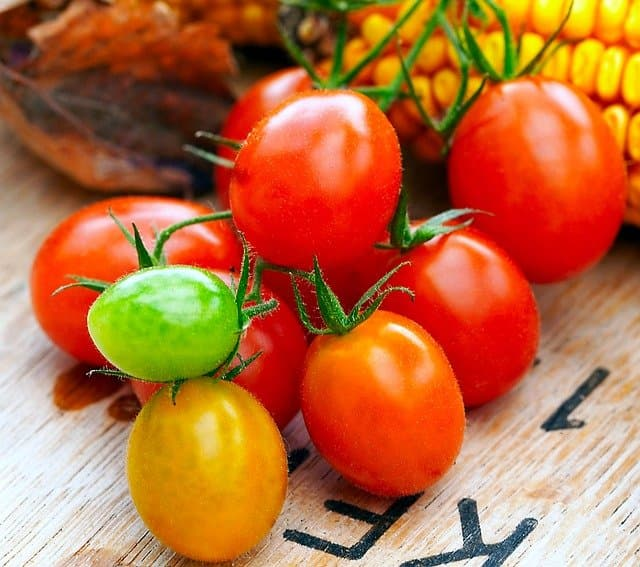 How to store cherry tomatoes to make them last longer